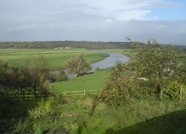 View of the River Ribble from Walton le Dale